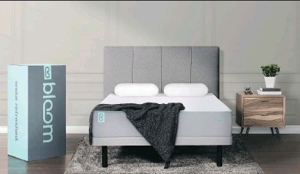 Sleep Country Is Offering Bloom A Newly Created Foam Mattress At 995 For Queen Size Bed Sleepcountry To Compete With Online Rivals