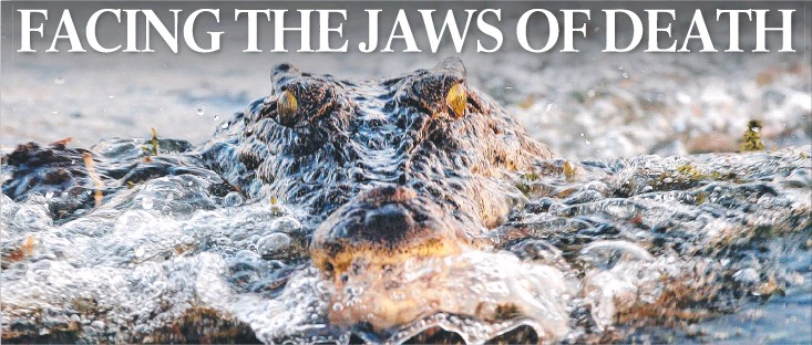 PressReader - The Weekend Australian: 2016-06-04 - KING CROC