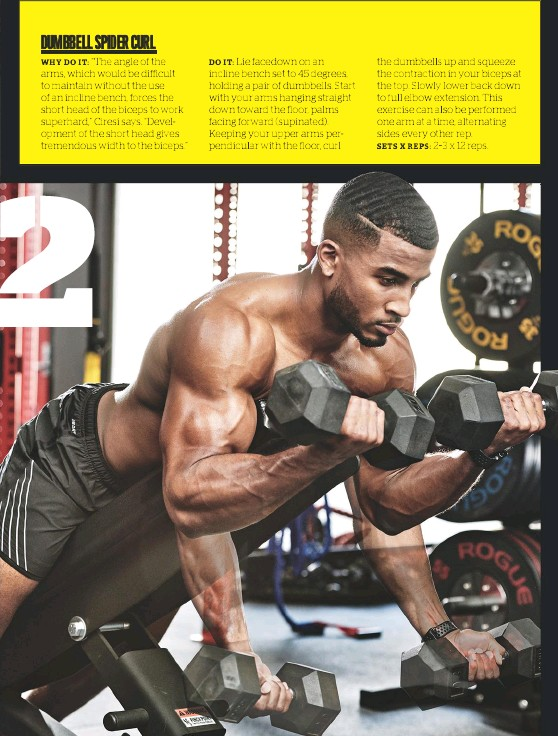 Marvelous Pressreader Muscle Fitness Usa 2019 04 01 Dumbbell Pabps2019 Chair Design Images Pabps2019Com