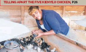 PressReader - Daily Nation (Kenya): 2018-03-24 - TELLING