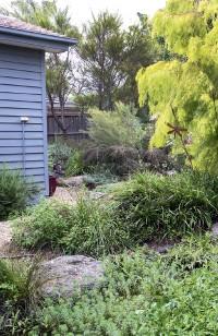 Pressreader Gardening Australia 2019 05 01 Native Nirvana