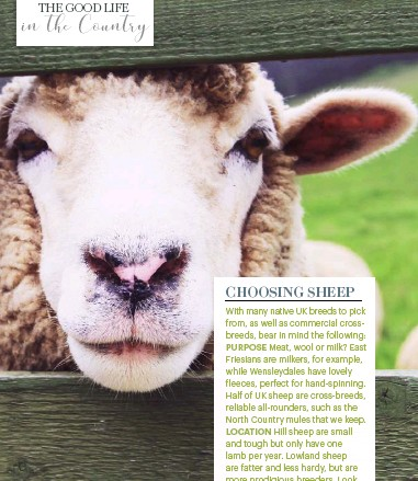 PressReader - Country Living (UK): 2019-05-01 - TALES FROM