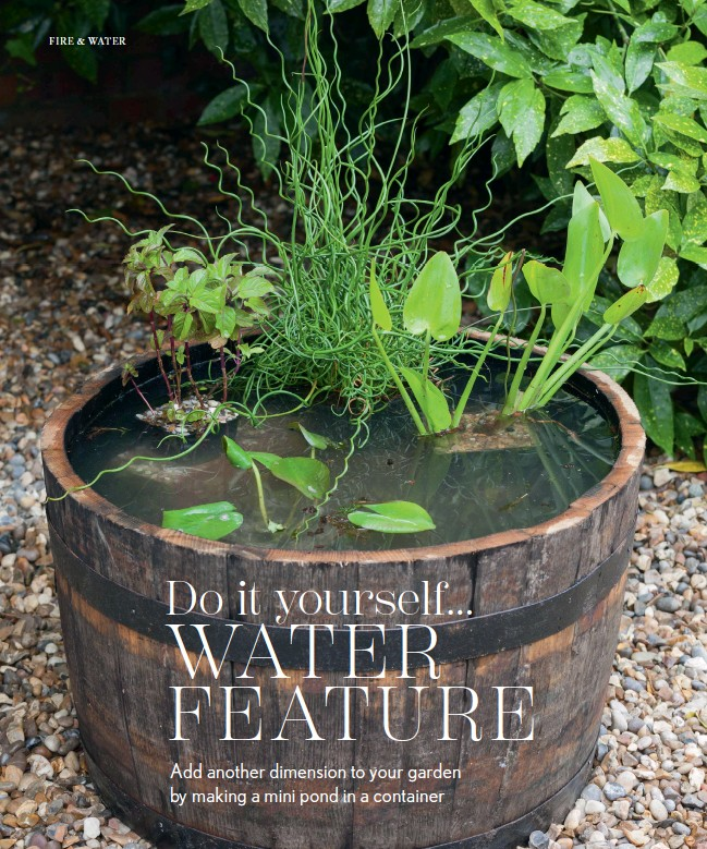 Pressreader nz house garden outdoor living 2017 12 01 do you could also install a bubbler or fountain both of which will deter mosquito larvae solutioingenieria Choice Image