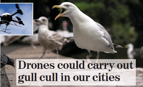 PressReader - Irish Independent: 2015-08-14 - Drones could
