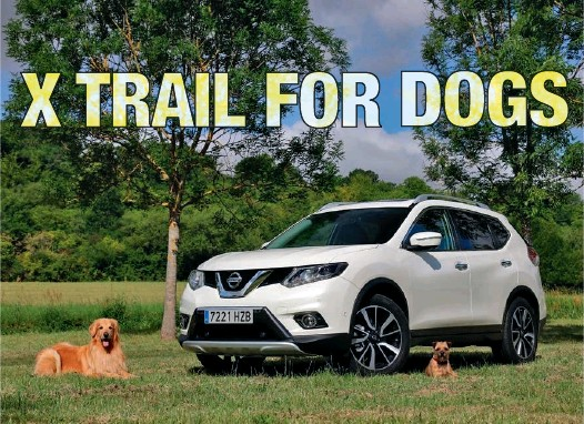Nissan X Trail For Dogs >> Pressreader New Zealand Lcv 2019 08 05 X Trail For Dogs