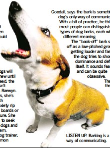 PressReader - Herald on Sunday: 2008-11-02 - The woof and warp of