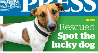 PressReader - The Press: 2019-08-22 - Rescued Spot the lucky dog