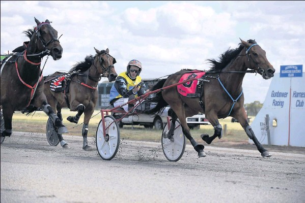 Sulky Shorts from Shepparton News - Shepparton Harness Racing Club